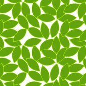 Rrrmod_citrus_leaves_lime_outline_on_white_shop_thumb