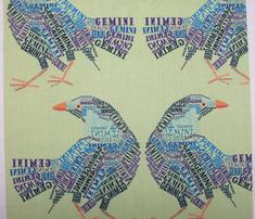 Rgemini_the_twin_bower_birds._comment_306653_thumb