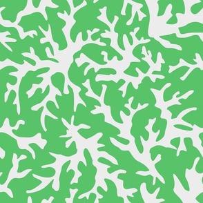 Mint Coral Reef Print
