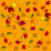 Japanese_maple_autumn_leaves_in_wild_orange_shop_thumb