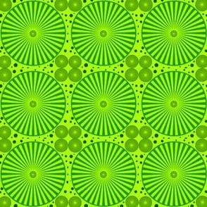 bolle_optical