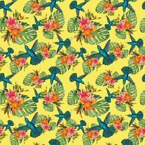 Tropical, Flowers, Hummingbird, Nature, SS14