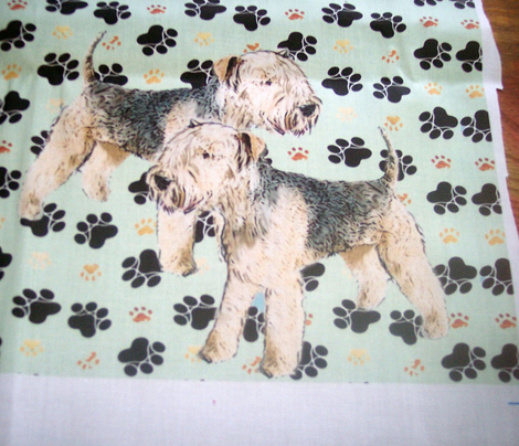 Lakeland_terriers_comment_316105_preview