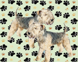 Lakeland_terriers_thumb