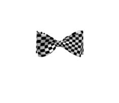 Race-checker-op-art_comment_735581_thumb