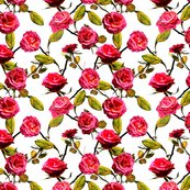 Rroses_photo_shop_thumb