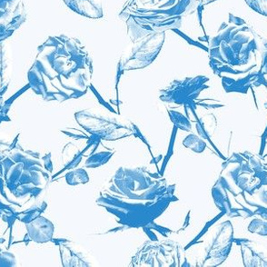 Photo of Roses Pattern (blue)