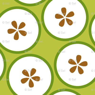 cut apples S43