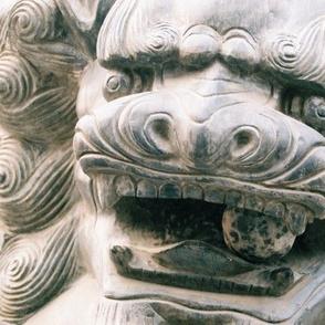 Crazy Mirror Chinese Lion