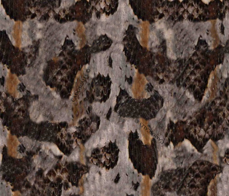 Timber Rattlesnake Print fabric by janelle_wooten on Spoonflower - custom fabric
