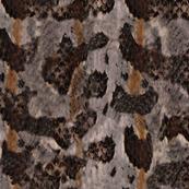 Timber Rattlesnake Print