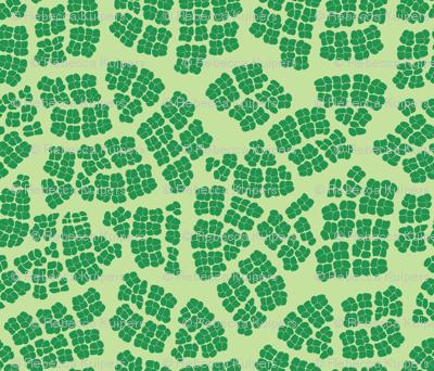 Mod_Leaf_Cells