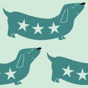 dachshund teal