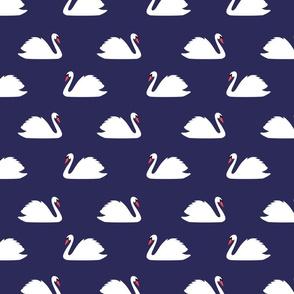 Swan Lake Navy