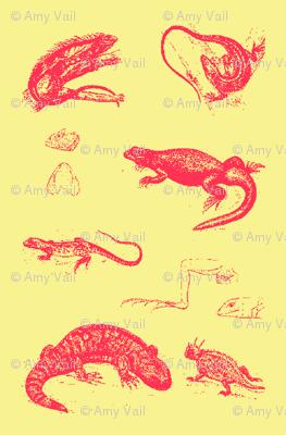 Iguanas de Provence