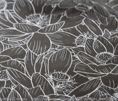 Lotus-madness-bw_comment_306941_preview