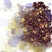 potpourri blotch
