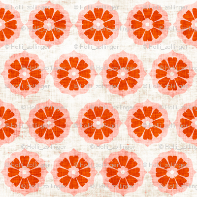 orange_cushionflower