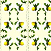 Rrrrrrlemon_by_joanne_brooks_jacobs_ed_ed_ed_shop_thumb