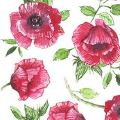 Red_poppies_pattern_shop_thumb