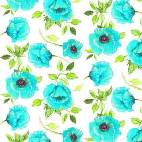 Aqua poppies
