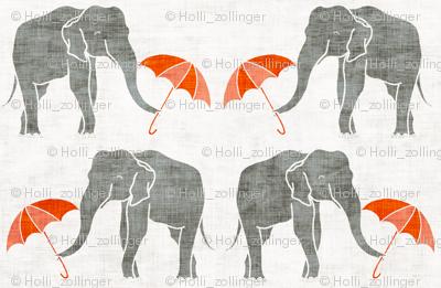 elephant_summer