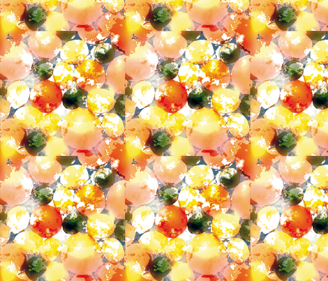 Citrus Fruit fabric by animotaxis on Spoonflower - custom fabric