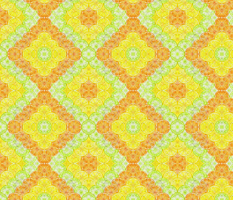 Expressions of Citrus fabric by vos_designs on Spoonflower - custom fabric