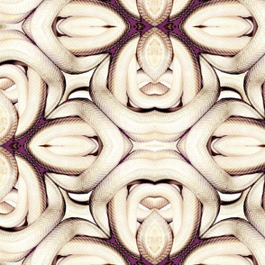 Snake Daisies