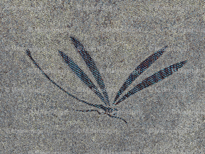 dragonfly in stone - stone grey