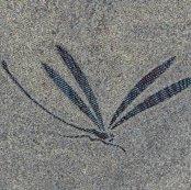Rrrkatagami__dragonfly_ed_ed_ed_shop_thumb