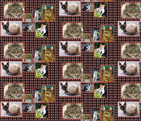 cat_collage fabric by dogdaze_ on Spoonflower - custom fabric