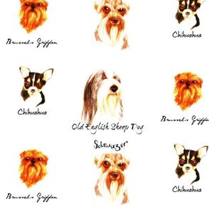 sophisticated canines-named