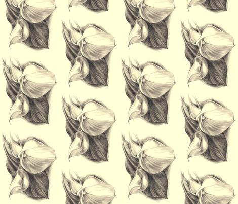 Calla Lilly Drawing fabric by anderson_designs on Spoonflower - custom fabric