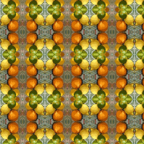 citrus_plaid