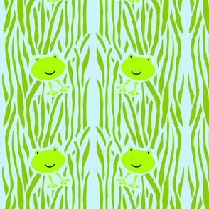 frog_peek-a-boo