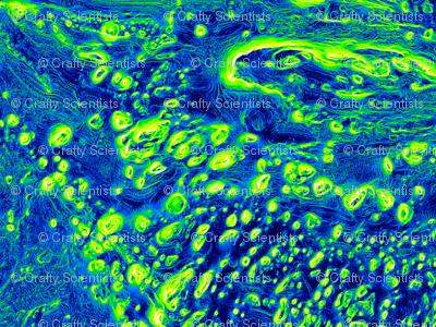 10_Martian_Mosaic-full