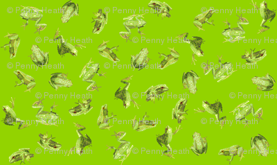 Bejewelled Froggy Fancy