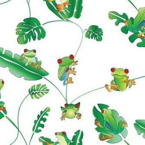 Even more little tree frogs