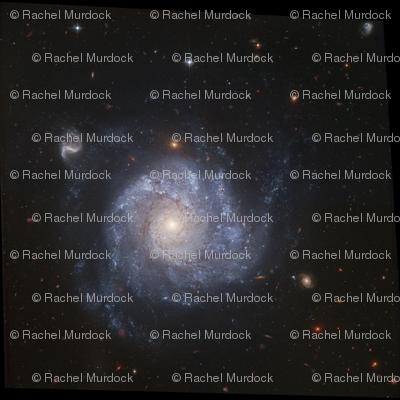 NGC1329