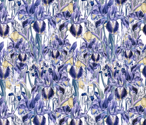 Iris Patch fabric by whimzwhirled on Spoonflower - custom fabric