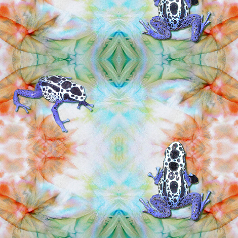 Two Toxic Frogs on tie dye fabric by koalalady on Spoonflower - custom fabric