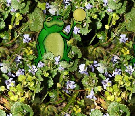 Rrrfrog_prince_shop_preview