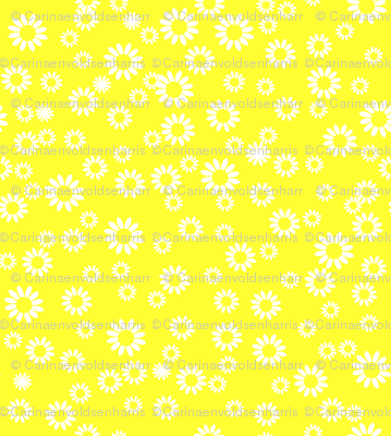 Bright yellow daisies