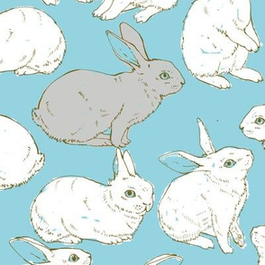 Rabbits in blue