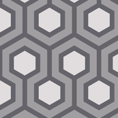 Gray Honeycomb Geometric