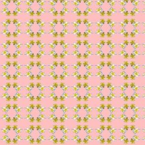 frangipani001