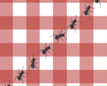 Rthe_ants_go_marching_fabric_sq_thumb
