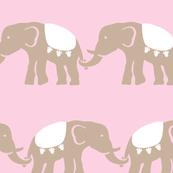 elephant_baby_girl_11