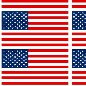 US Flag (with border)